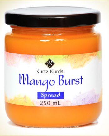Mango Burst Curd